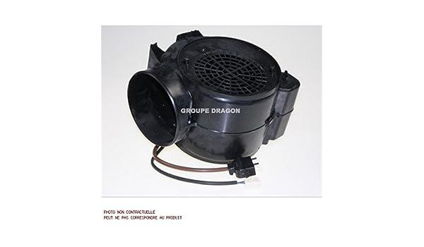 Thermor – Motor para campana Thermor: Amazon.es: Grandes electrodomésticos