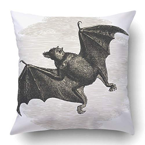 dan ding Throw Pillow Covers White Bat Vintage Engraved Histoire Naturelle Buffon Lacpde Published in 1881 France Night Polyester 18 X 18 inch Square Hidden Zipper Decorative Pillowcase