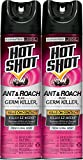 Hot Shot Ant & Roach Plus Germ Killer2 (Fresh Floral Scent Aerosol) (HG-26301) (2 - 17.5 oz)