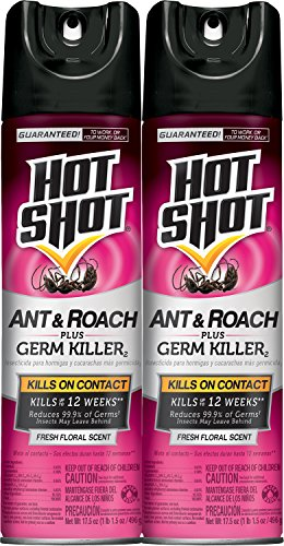 Hot Shot Ant & Roach + Germ Killer (Fresh Floral Scent Aerosol),17.5-oz, 2-PK