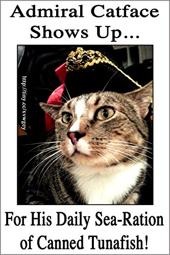 [ADMIRAL CATFACE-- 1 Large, funny fridge magnet, 4x6 inches (10.16 x 15.24 cm), meme decorative magnetic sign plaque, pet tabby cat wearing a hat] (Stoner Costume Diy)