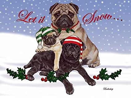 pug christmas cards snow 10 holiday cards with red envelopes adorable - Pug Christmas