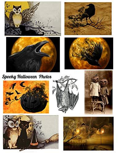 Halloween Spooky Photos Collage Sheet, Halloween, Scrapbooking, ATC, Altered Art 8.5 x 11