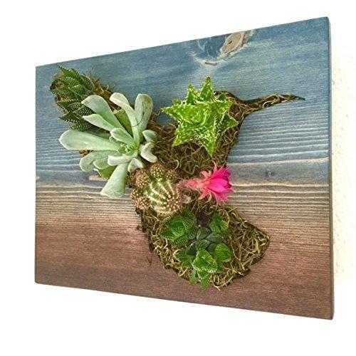 CUSTOM COLOR: Hummingbird Succulent + Cacti Vertical Garden || Living Wall || Wall Planter || Hanging Planter -