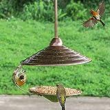 Zelro Wild Hanging Bird Feeders for Outside, Metal Attractant Bird Feeder fit
