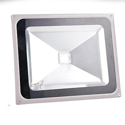 Floodlight Projecteur LED Lumières d'arbre de plaque d'immatriculation vertes imperméables extérieures de paysage de jardin de couleur de projecteur