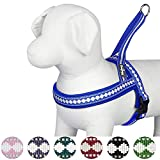 Blueberry Pet 7 Colors Soft & Comfy 3M Reflective Jacquard Padded Dog Harness, Chest Girth 25.5'' - 31.5'', Palace Blue, M/L, Adjustable Harnesses for Dogs