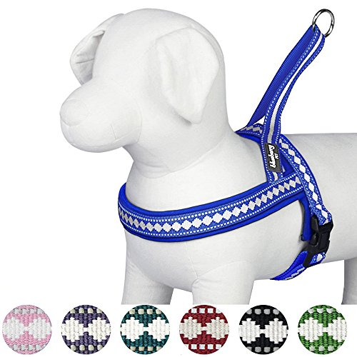 Blueberry Pet 7 Colors Soft & Comfy 3M Reflective Jacquard Padded Dog Harness, Chest Girth 25.5'' - 31.5'', Palace Blue, M/L, Adjustable Harnesses for Dogs by Blueberry Pet