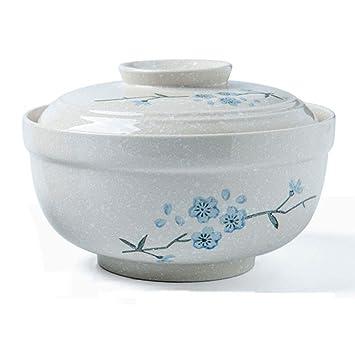 AFDK Sopa de cerámica grande Fideos Tazón de pasta con tapa ...
