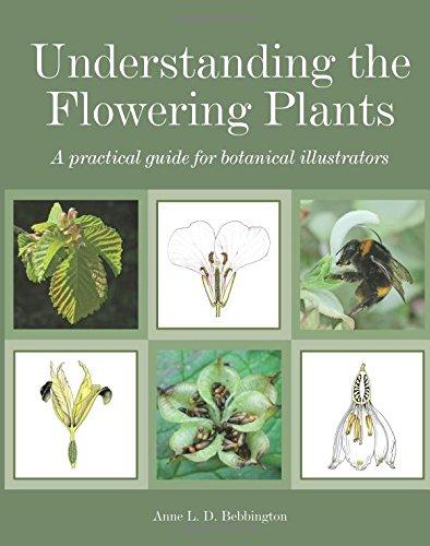 (Understanding the Flowering Plants: A Practical Guide for Botanical Illustrators)