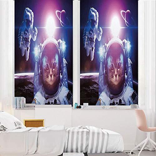 Space Cat 3D No Glue Static Decorative Privacy Window Films, Astronauts in -