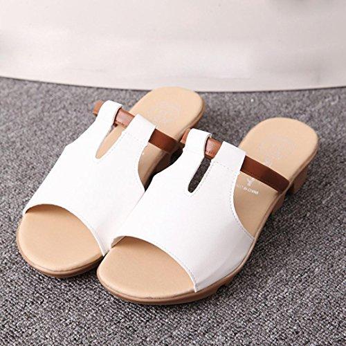 bescita Cut Out Sandalen Fashion Solid Sommerstrand gleitet Hausschuhe Damenschuhe (39, Weiß)