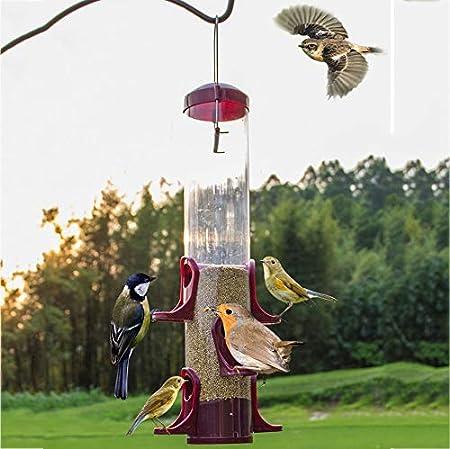 Comederos para pajaros Exterior Colgar Comedero para pájaros Dispensador de Comida para Aves Alimentador Decorativo para su jardín: Amazon.es: Hogar