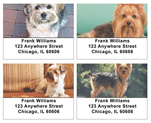 Dog Personalized Address Labels (Yorkshire Terriers Address Labels)