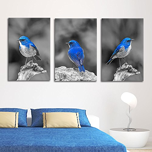 wall26 3 Panel Canvas Wall Art - Color Splash of Blue Bird with Black and White Background - Giclee Print Gallery Wrap Modern Home Decor Ready to Hang - 16