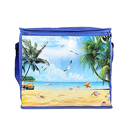 Amazon.com: 26L Portable picnic lunch bag borse frigo ...