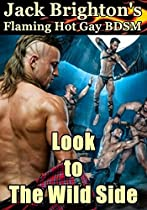 LOOK TO THE WILD SIDE: FLAMING HOT GAY BDSM (TALES FROM THE WILD SIDE BOOK 12)
