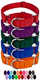 Country Brook Design 10 Martingale Heavyduty Nylon Dog Collar (Small, 3/4 Inch Wide, Assorted)