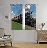 iPrint Stylish Window Curtains,Steam Engine,Vintage Locomotive in Countryside Scenery Green Grass Puff Train Picture,Blue Green Black,2 Panel Set Window Drapes,for Living Room Bedroom Kitchen Cafe