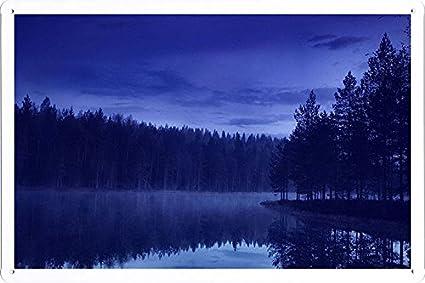 Amazon.com: Planeta Escena Cartel – Agua Bosque Playa Noche ...