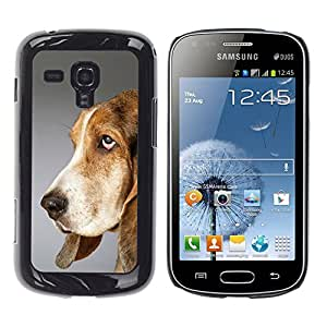 Vortex Accessory Hard Protective Case Skin Cover For Samsung Galaxy S Duos ( S7562 S7560 S7560M ) - Pointer Dog English Foxhound