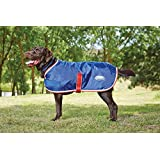 "Weatherbeeta Windbreaker 420D Dog Coat (20"", Black/Teal)"