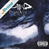 Break The Cycle [Explicit]