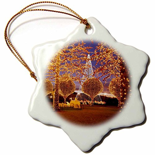 Wild Bramble 3-Inch Porcelain Snowflake Decorative Hanging Ornament,