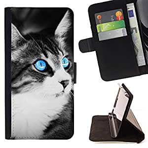 Jordan Colourful Shop - Blue Eye Cat For Apple Iphone 6 PLUS 5.5 - Leather Case Absorci???¡¯???€????€??????????&fno