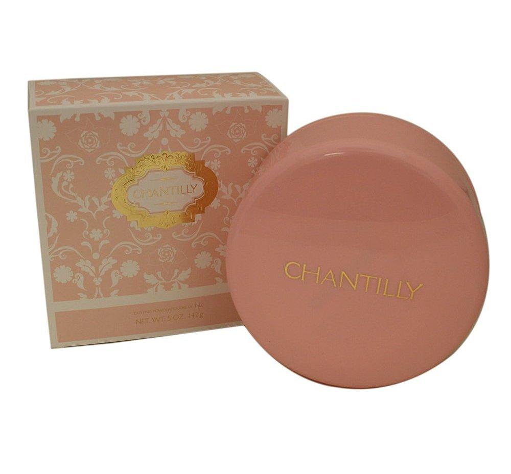 Dana Chantilly For Women Dusting Powder, 5 Oz + FREE Assorted Purse Kit/Cosmetic Bag Bonus Gift