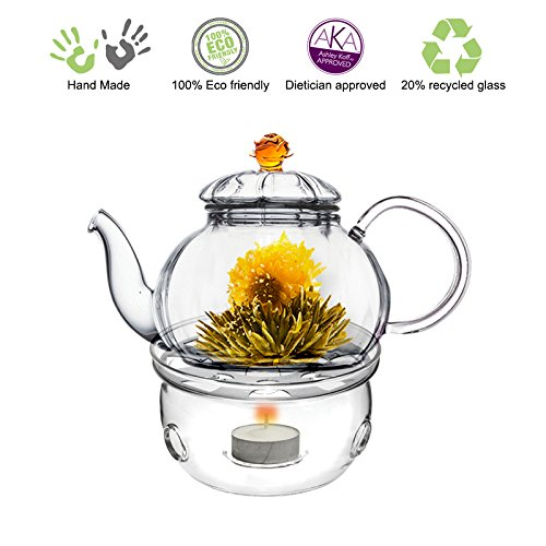 Glass Teapot Friendship series with Tea Warmer Cozy Lead Free Special Glass No Drip by Tea Beyond (Glass, 20 oz Amber Juliet)