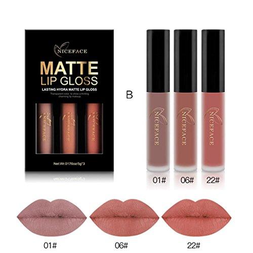 Waterproof Matte Liquid,Datework 3PCS New Fashion Lipstick Cosmetic Sexy Lip Gloss Kit (B) New Fashion Makeup Kit