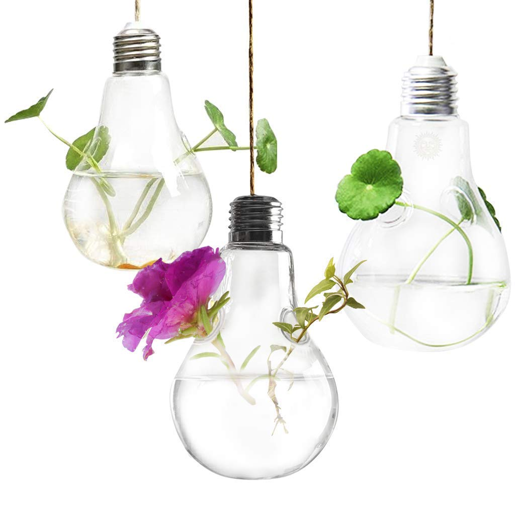 3 Hanging Light Bulb Plant Pot with Strings – Planter Terrarium for Home Refurbishment – Stylish Decor to Purify air – Effortless Setup – Ecological Miniature Garden – Perfect for Small House Plants