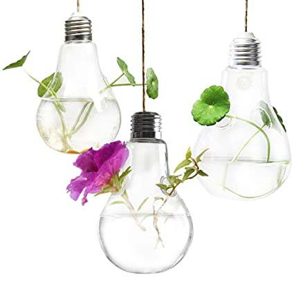 Amazon Com Hanging Terrarium Mini Hanging Garden Functional