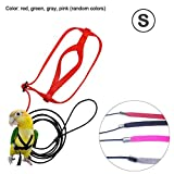 Pet Bird Harness and Leash, Bird Training Outdoor Carrying Parrot Harness and Leash Flying Anti-bite Traction Rope for Psittacus Erithacus Scarlet Macaw Parrots Birds