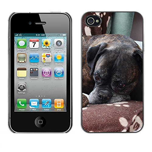 Premio Sottile Slim Cassa Custodia Case Cover Shell // F00014285 chien boxer // Apple iPhone 4 4S 4G