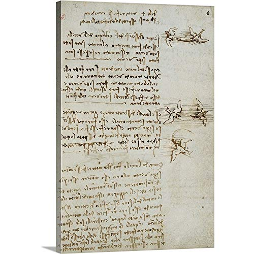 - Leonardo da Vinci Solid-Faced Canvas Print Wall Art Print Entitled Codex on The Flight of Birds, by Leonardo da Vinci, 1505-1506. Royal Library, Turin 12
