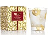 NEST Fragrances NEST01-BP Birchwood Pine Scented Classic Candle, 8.1-Ounce