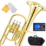 Mendini E Flat Alto Horn with Stainless Steel Pistons, Lacquered