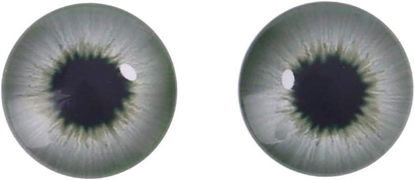 ZOOMY 20 Pi/èces Animal Bricolage Artisanat Globes Oeil en Verre Poup/ée EyesFor Dinosaure Oeil Accessoires Fabrication De Bijoux /À La Main Couleur Al/éatoire