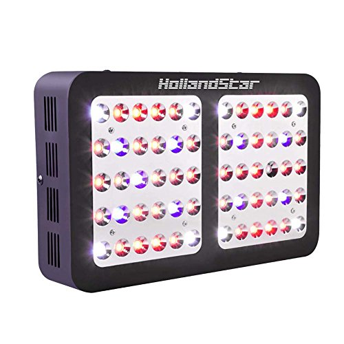 HollandStar LED Grow Light Full Spectrum 1000 Watt/1200W for Indoor Plants Veg and Flower (300W) by HollandStar