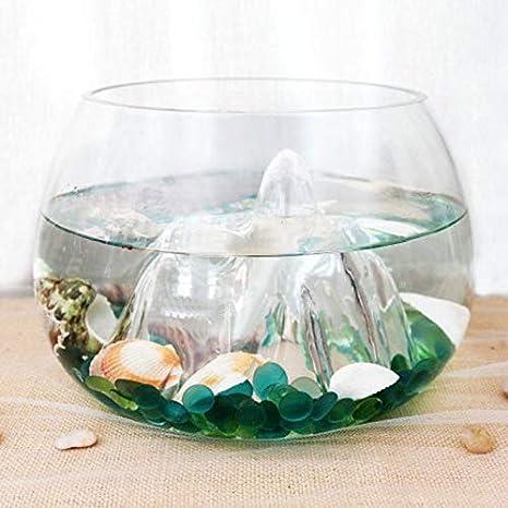 KUNSE 25Cm Vidrio Florero Pez Tanque Goldfish Bowl Terrario Decoración De Acuarios: Amazon.es: Hogar