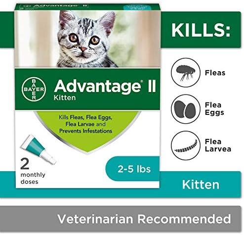 Bayer Advantage Kitten Treatment Kittens product image