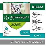 Flea Prevention for Kittens, 2-5 lb, 2 doses, Advantage II