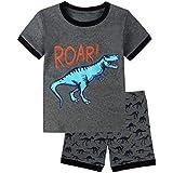 Skypiea&Co. Boys Pajamas Dinosaur 100%...
