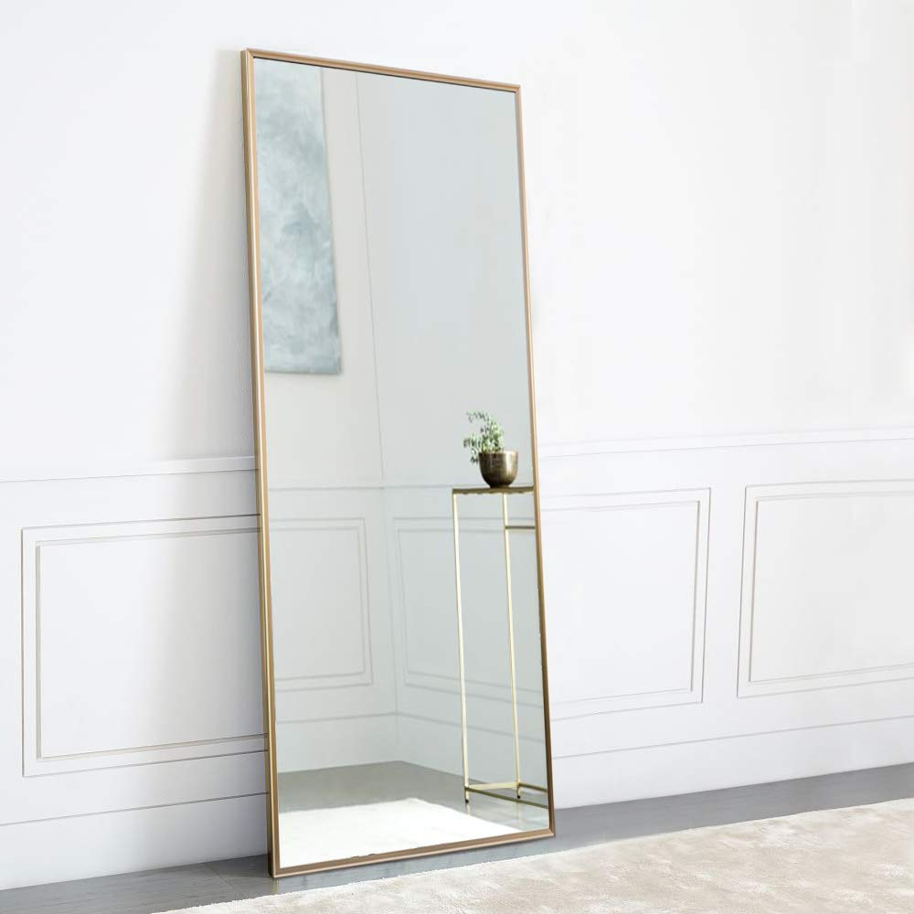 NeuType Full Length Mirror Standing Hanging or Leaning Against Wall, Large Rectangle Bedroom Mirror Floor Mirror Dressing Mirror Wall-Mounted Mirror, Aluminum Alloy Thin Frame, 65''x22''