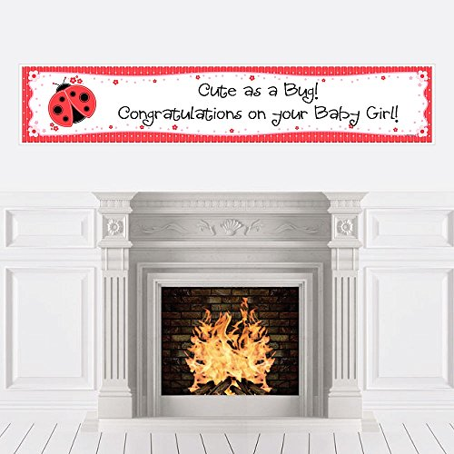 (Big Dot of Happiness Modern Ladybug - Baby Shower Decorations Party Banner)