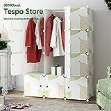 Tespo Portable Clothes Closet Wardrobe, DIY Modular Storage Organizer, Sturdy Construction, Deeper Cubes with Hanging Rods Leaf White … (12 Cubes)