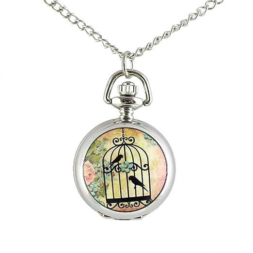 Feelontop® Fashion Birdcage con Aves Patrón de Flores Reloj de Bolsillo Largo Tono Plateado Cadenas metálicas Collar con Estuche para Joyas: Amazon.es: ...