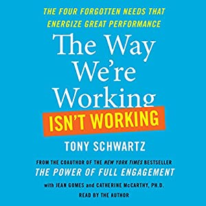 The Way We're Working Isn't Working Audiobook